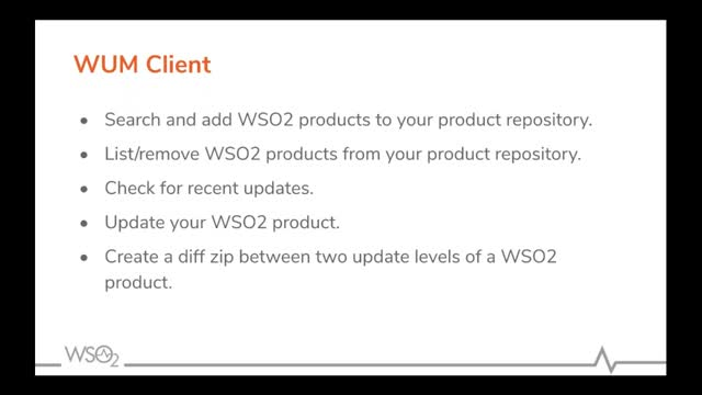 Updating Your WSO2 Products
