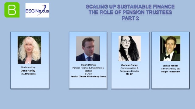 Scaling-up Sustainable Finance: The Role of Pension Trustees Part 2