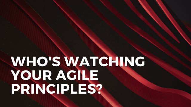 Who's Watching Your Agile Principles?