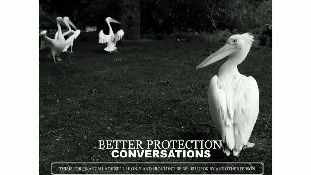Better Protection Conversations