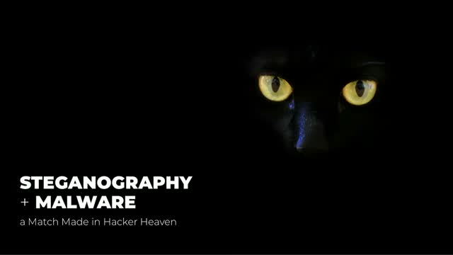 Steganography + Malware - a Match Made in Hacker Heaven