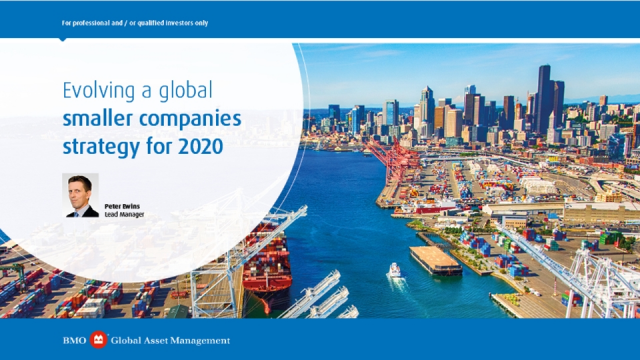 Evolving a global smaller companies strategy for 2020