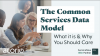 The Common Services Data Model: What it is & Why You Should Care