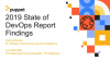 2019 State of DevOps Report Findings