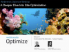 A Deeper Dive into Site Optimization