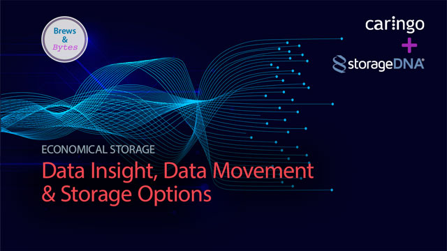 Economical Storage: Data Insight, Data Movement and Storage Options