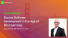 Secure Software Development in the Age of Microservices