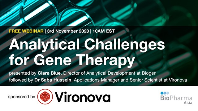 Analytical Challenges for Gene Therapy