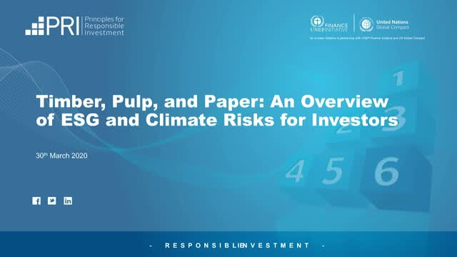 Timber, Pulp, and Paper: An Overview of ESG and Climate Risks for Investors