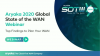 2020 Global The State of the WAN – Report Findings and Analysis (EMEA Region)