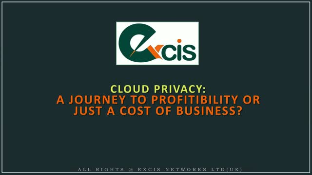 Cloud Privacy: A Journey to Profitability or Just a Cost of Business?