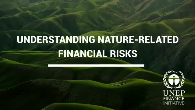 Nature-related Financial Risks