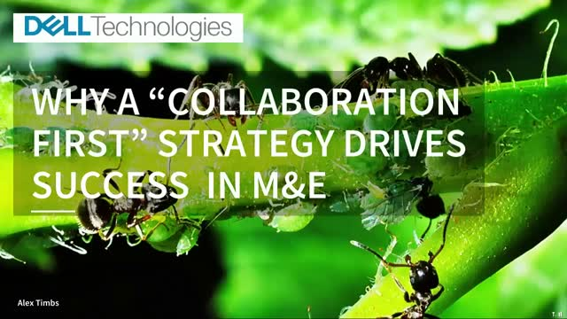 Why a 'Collaboration First' Strategy Drives Success in M&E
