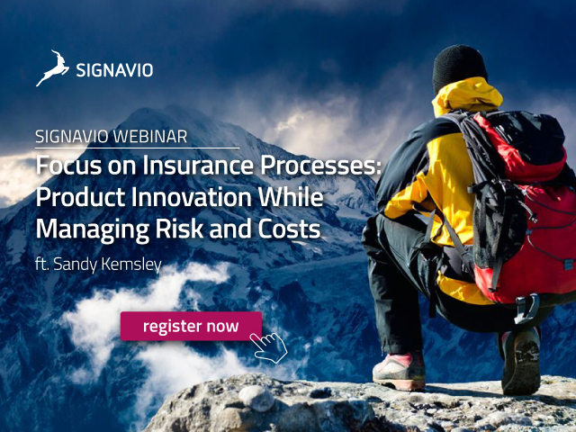 Focus on Insurance Processes: Product Innovation While Managing Risk and Cost