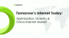 Tomorrow's Internet Today: Optimization, Diversity & China Internet Market