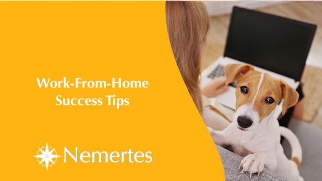 Work-From-Home Success Tips