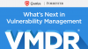 What's Next in Vulnerability Management