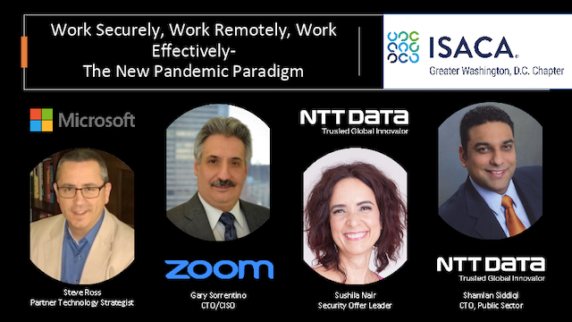 Work Securely, Work Remotely, Work Effectively: The New Pandemic Paradigm