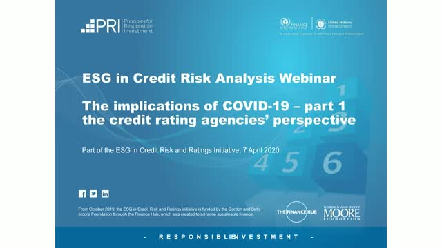 ESG in credit risk analysis: the implications of Covid-19
