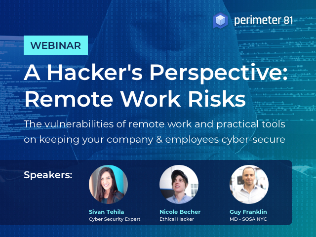 A Hacker's Perspective: Remote Work Risks