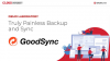 Truly Painless Backup and Sync with Goodsync