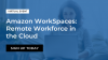 Amazon WorkSpaces: Remote Workforce in the Cloud