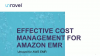 Effective Cost Management for Amazon EMR