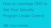 How to Leverage DNS to Get Your Security Program Under Control