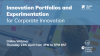 Innovation Portfolios and Experimentation for Corporate Innovation