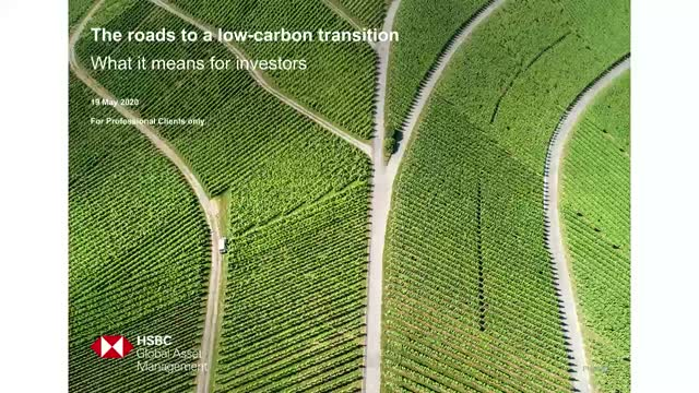 The roads to a low-carbon transition: What it means for investors