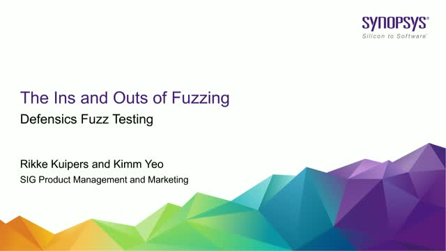 The Ins and Outs of Fuzzing