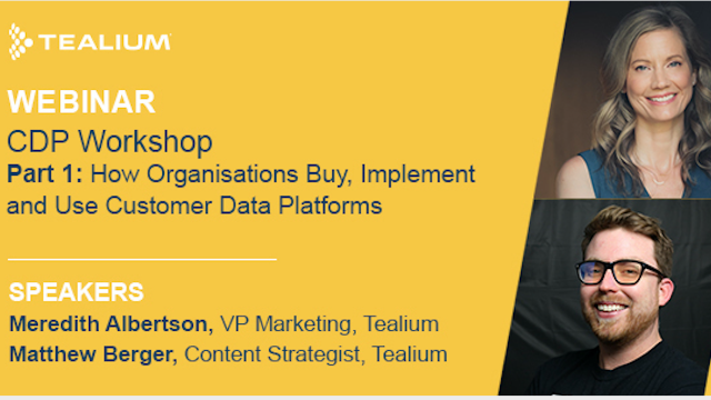 How organisation buy, implement and use Customer Data Platform