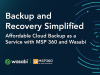 Backup and Recovery Simplified: Affordable Cloud Backup with MSP 360