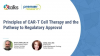 Principles Of CAR T-Cell Therapy And The Pathway To Regulatory Approval