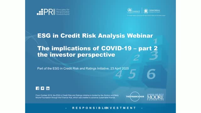 ESG in credit risk analysis: the implications of COVID-19 – part two