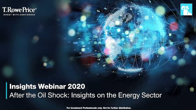 After the Oil Shock: Insights on the Energy Sector