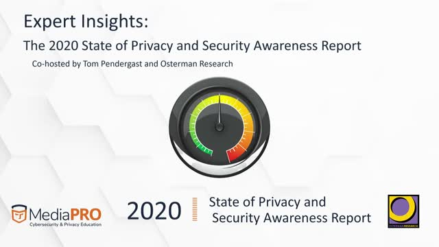Expert Insights: The 2020 State of Privacy and Security Awareness Report