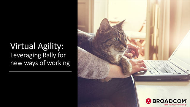 Virtual Agility: Leveraging Rally for New Ways of Working