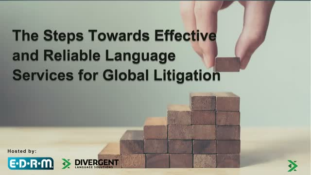 The Steps Towards Effective and Reliable Language Services for Global Litigation
