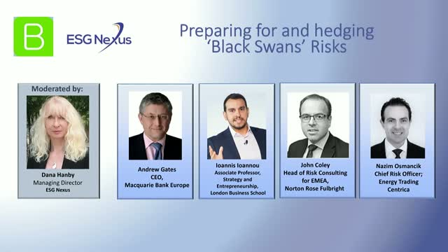How Investors Can Prepare For and Hedge 'Black Swan' Risks.