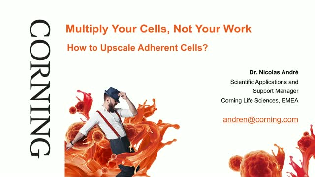 Multiply Your Cells, Not Your Work: How to Upscale Adherent Cells [FR. VERSION]