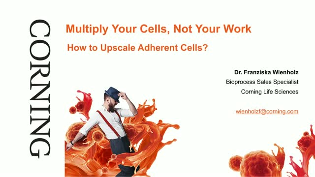 Multiply Your Cells, Not Your Work: How to Upscale Adherent Cells [GER. VERSION]