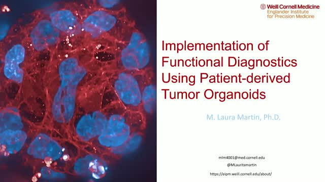 Implementation of Functional Diagnostics using Patient-derived Tumor Organoids
