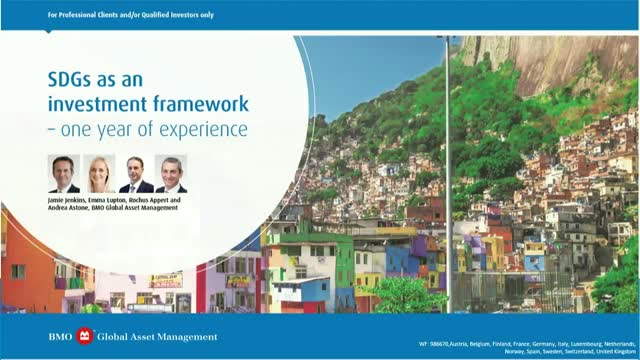 SDGs as an investment framework – One year of experience