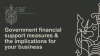 Government financial support measures & the implications for your business