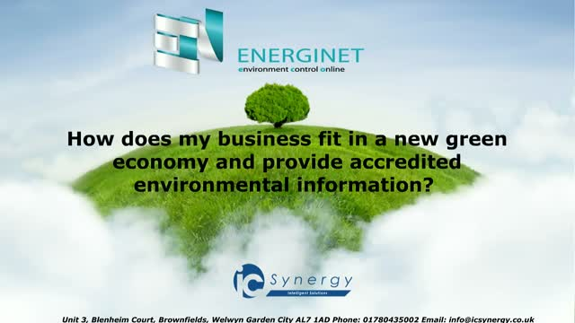 How does business fit in a green economy and provide environmental information?
