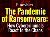 The Pandemic of Ransomware: How Cyber Criminals React to the Chaos