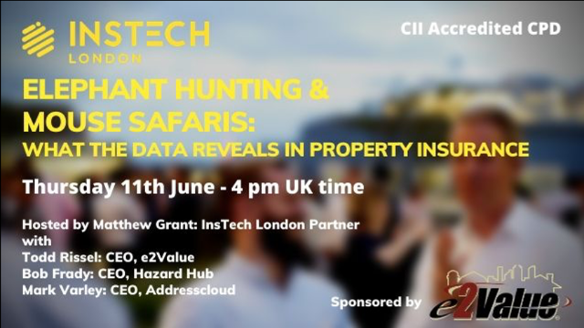 Elephant Hunting & Mouse Safaris: What the Data Reveals in Property Insurance