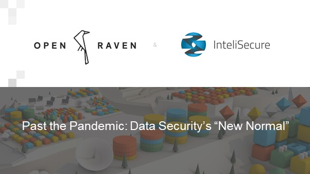 """Past the Pandemic: Data Security's """"New Normal"""""""