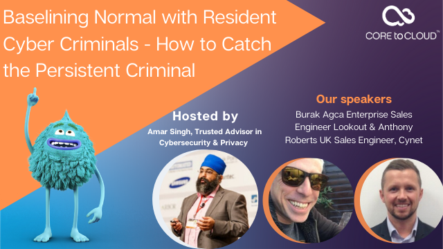 Baselining Normal with Resident Criminals - How to Catch the Persistent Hacker